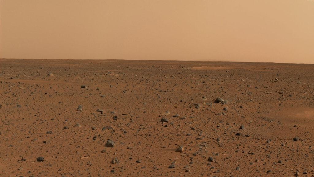 Mars den röda planeten