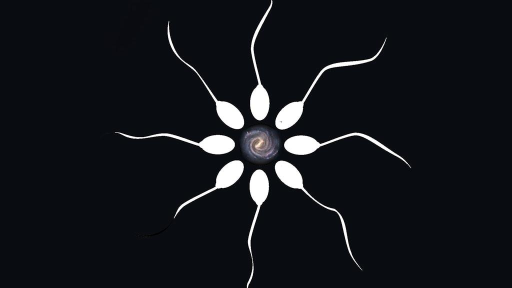 Sperma mot universum