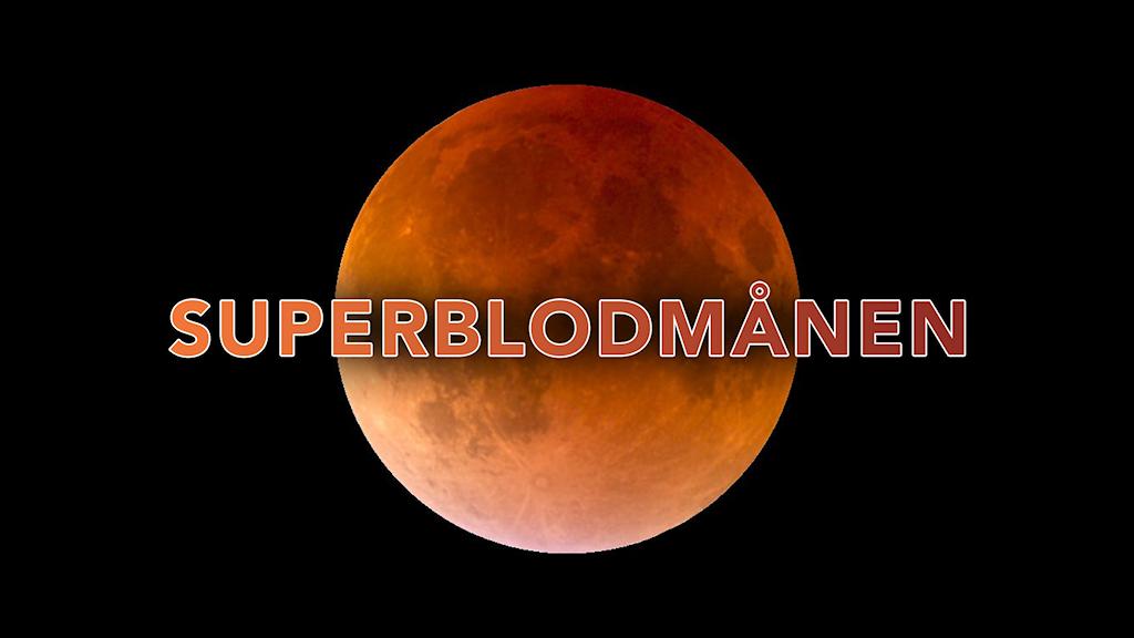 Superblodmånen