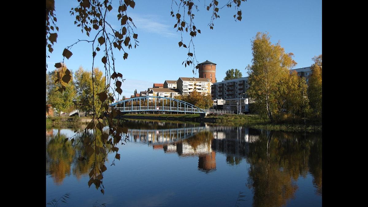 Foto: Lars-Gunnar Olsson SR Värmland