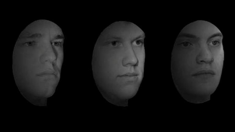 Ansiktsigenkänning, skärmdump från test.