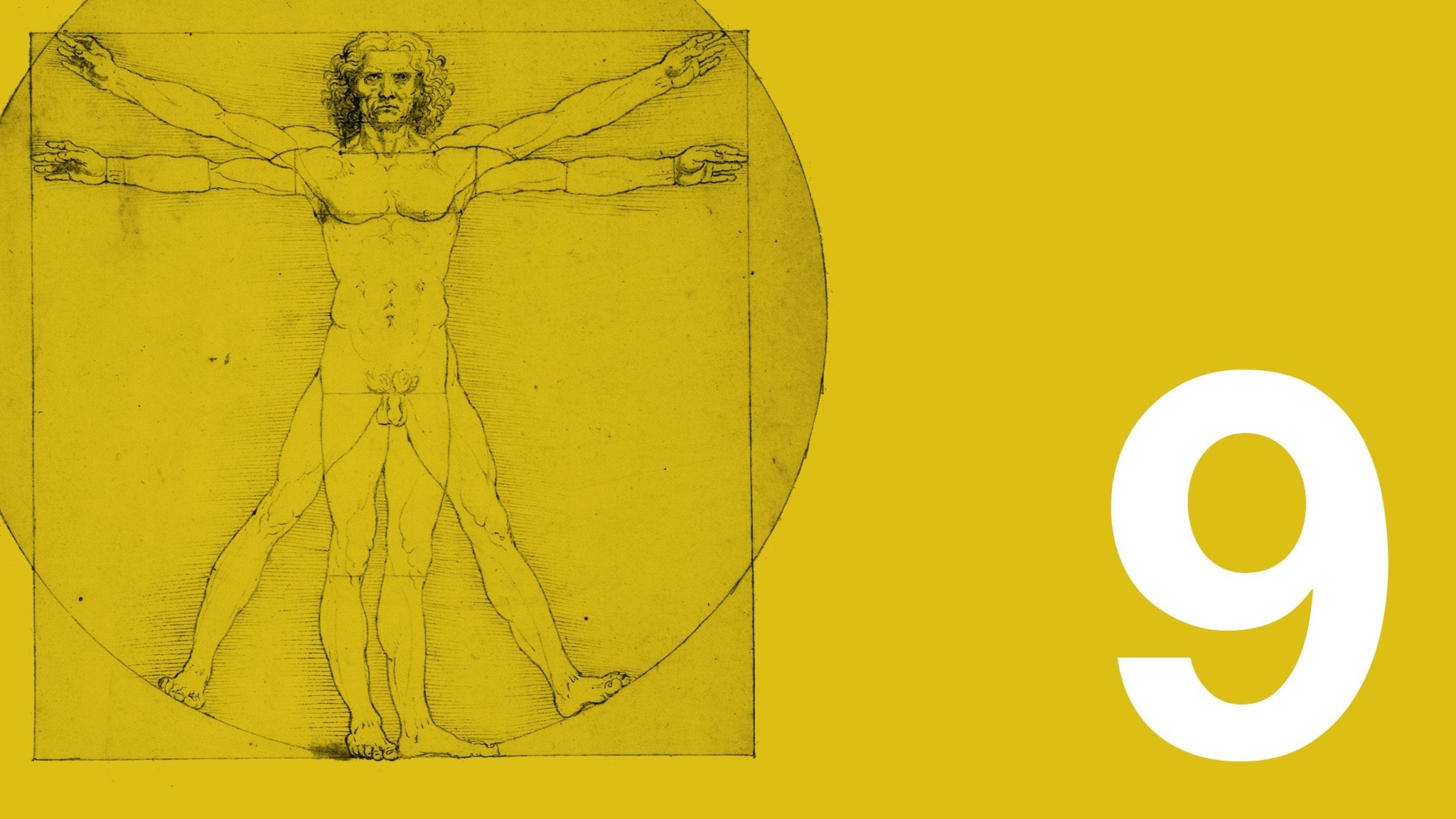 Bilden visar ett utsnitt av Leonardo da Vincis teckning den vitruvianske mannen, som ofta har fått stå som sinnebild för människans ideala proportioner. Teckningen är till vänster i bild. Bakgrundsfärgen är ockragul. Längst ner till höger syns en vit nia.