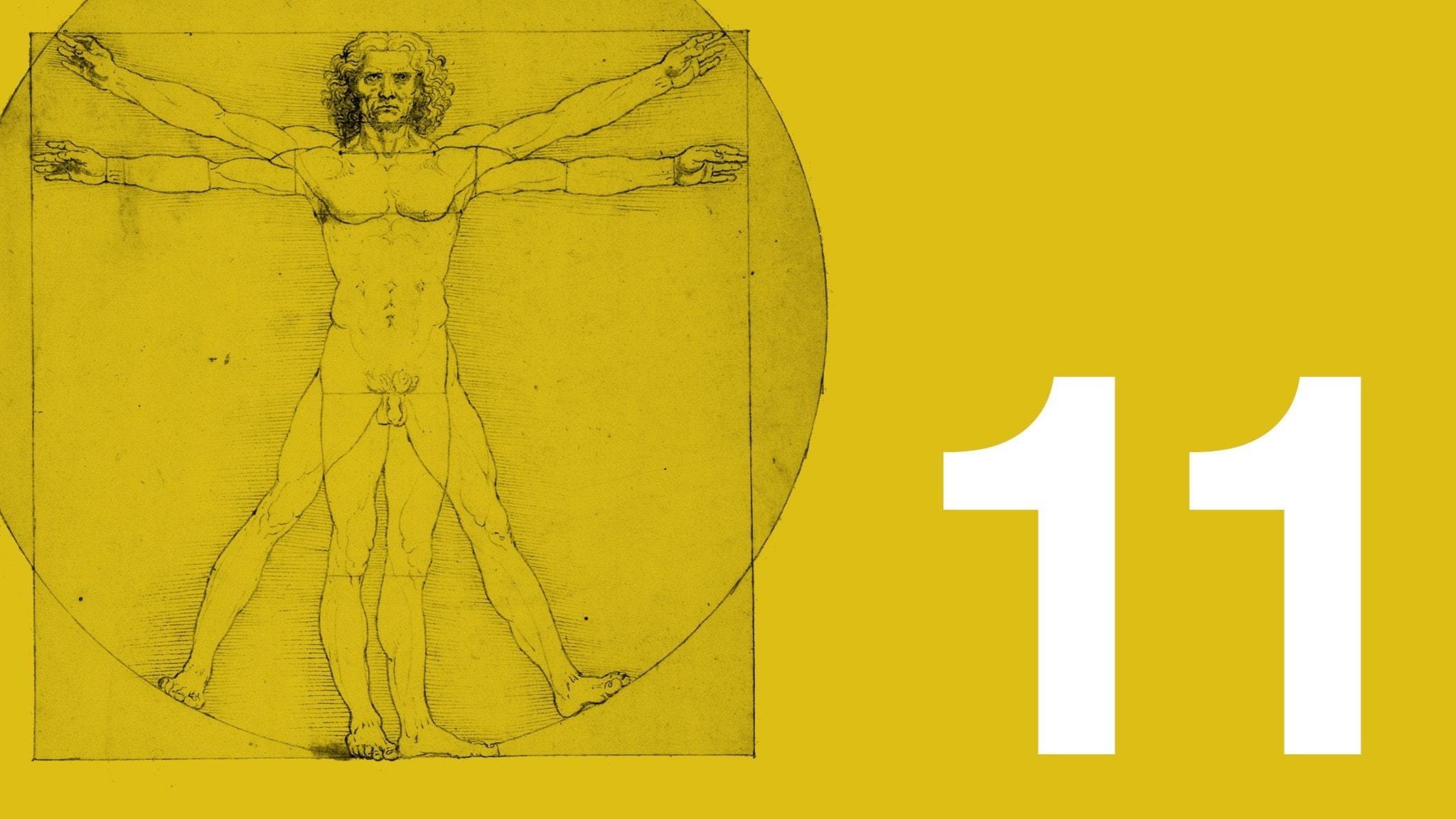 Bilden visar ett utsnitt av Leonardo da Vincis teckning den vitruvianske mannen, som ofta har fått stå som sinnebild för människans ideala proportioner. Teckningen är till vänster i bild. Bakgrundsfärgen är ockragul. Längst ner till höger syns en vit elva.