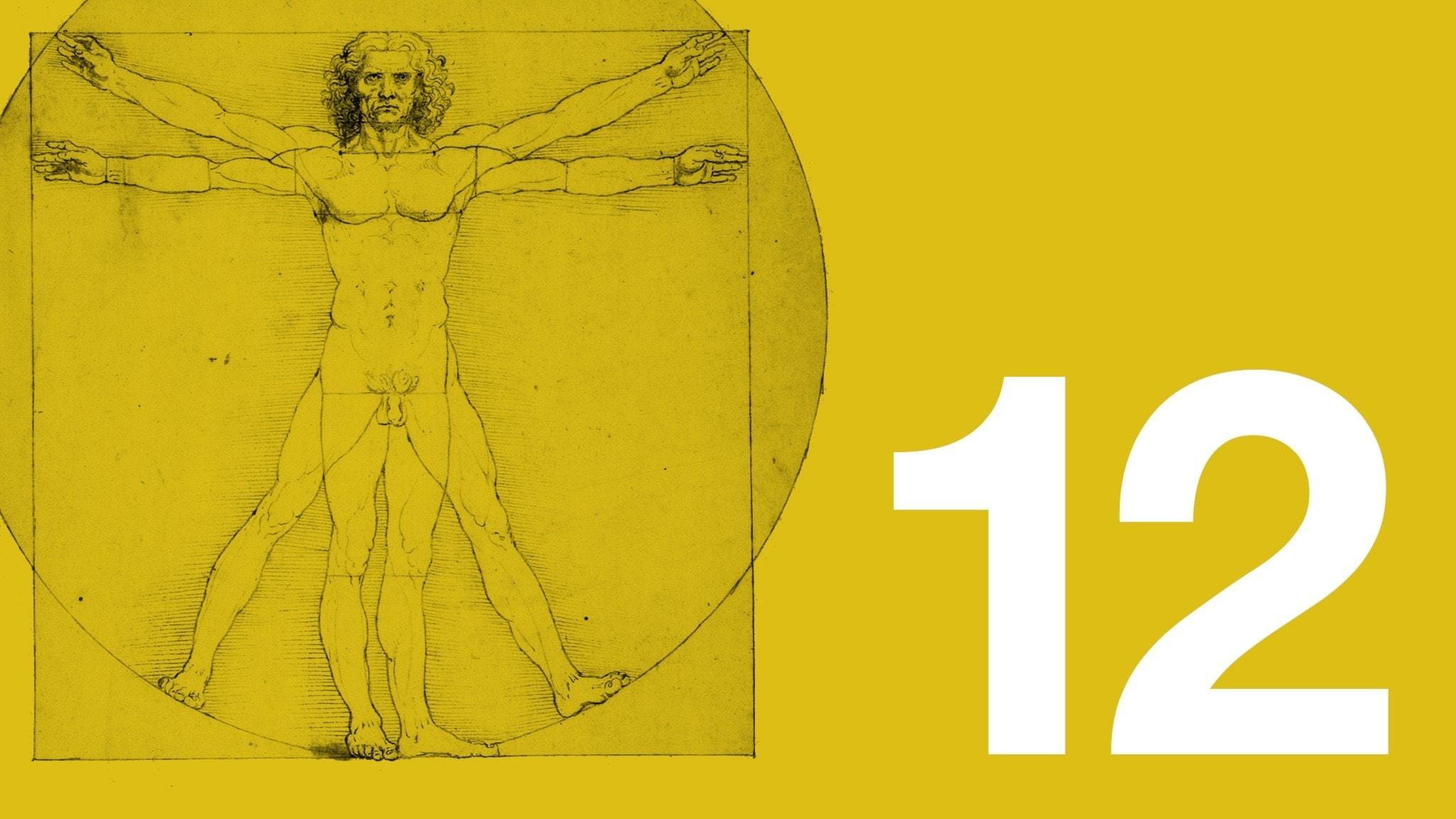 Leonardo da Vincis teckning Den vitruianske mannen visar människans ideala proportioner.