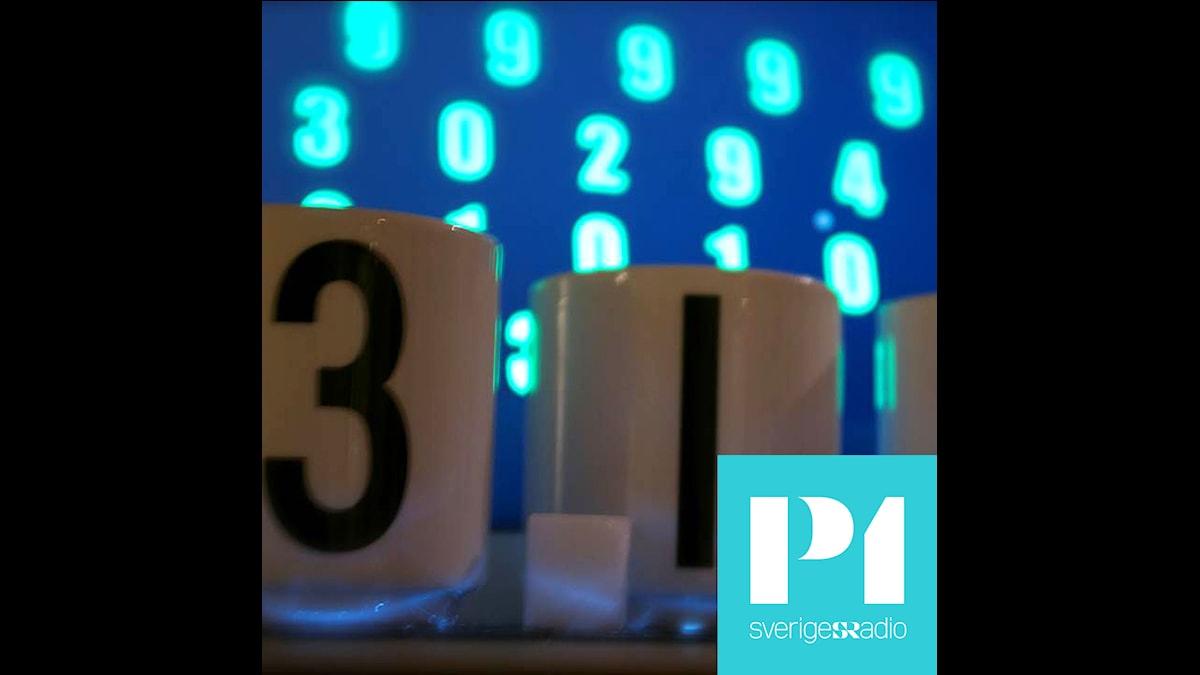 Den gömda koden. Foto: Sveriges Radio