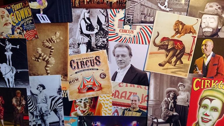 Om cirkus 1