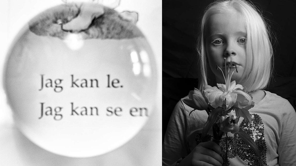 Lars Öberg: Vad vi ser