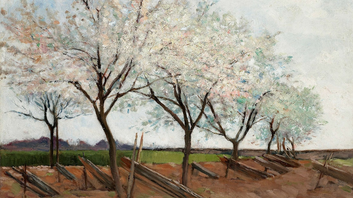 Blommande fruktträd av C F Hill