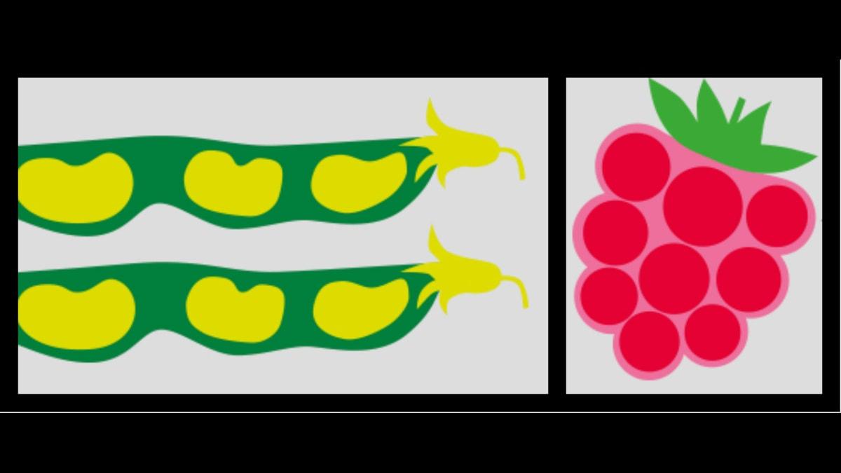 Grönsakslandet. Collage av Lotta Kühlhorn
