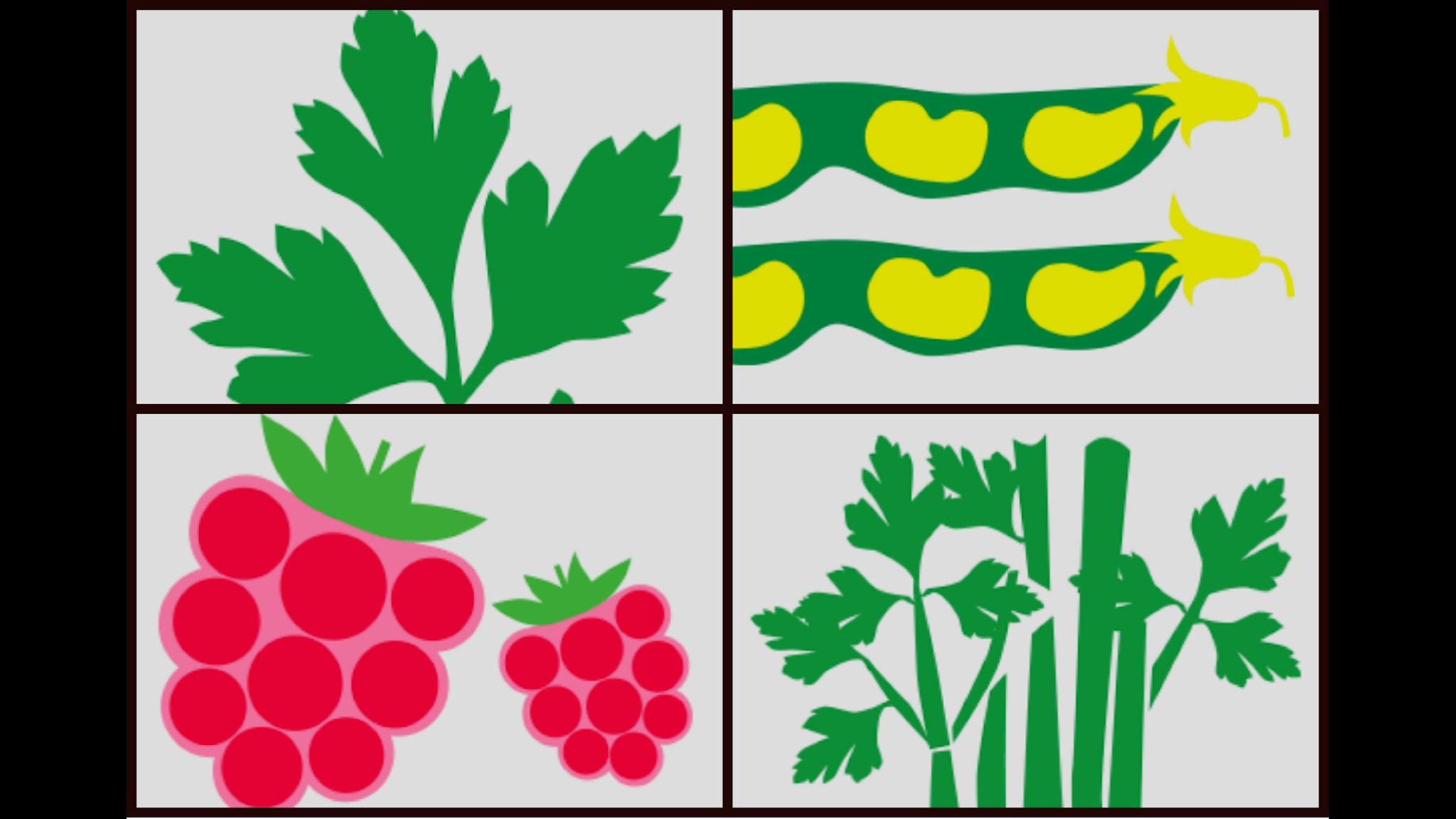 Grönsakslandet. Illustrationer av Lotta Kühlhorn