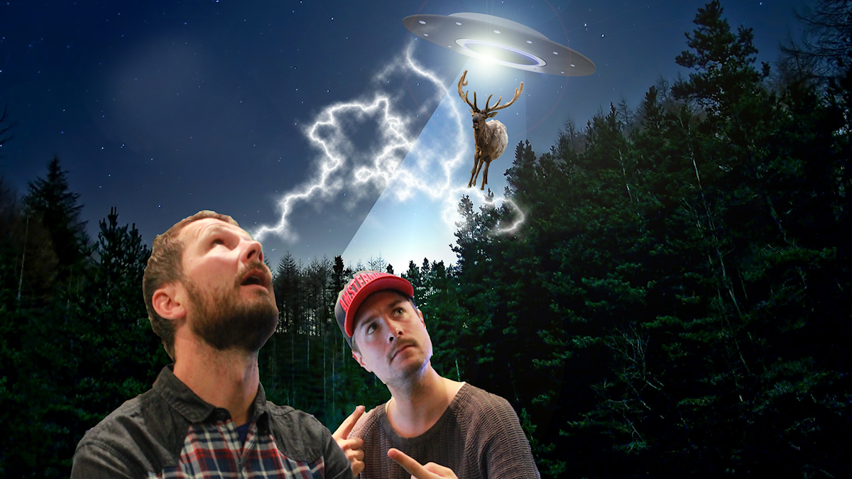Veterinären Jonas Malmsten & David beskådar en kronhjort som kidnappas av ett ufo...typ. OBS: Fotot är ett montage