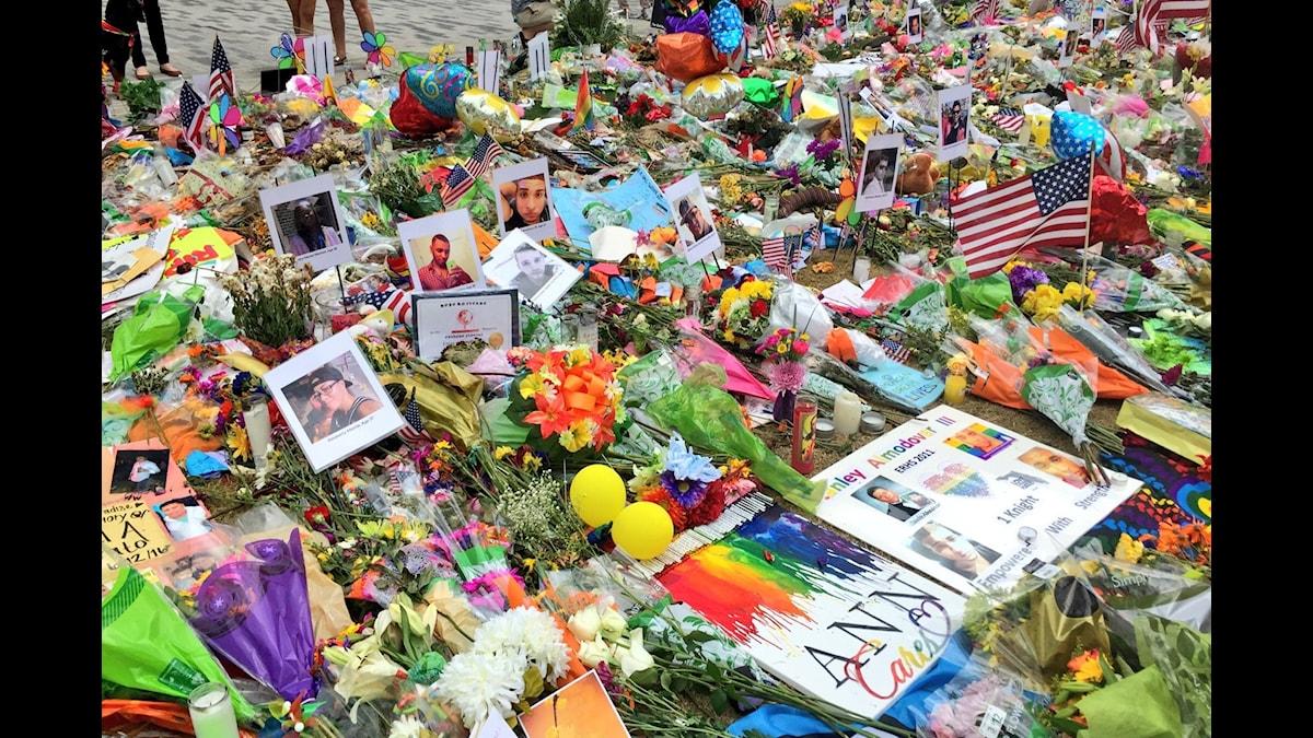 Minnesplats efter massakern på gayklubben Pulse i Orlando. Foto: Palmira Koukkari Mbenga / Sveriges Radio