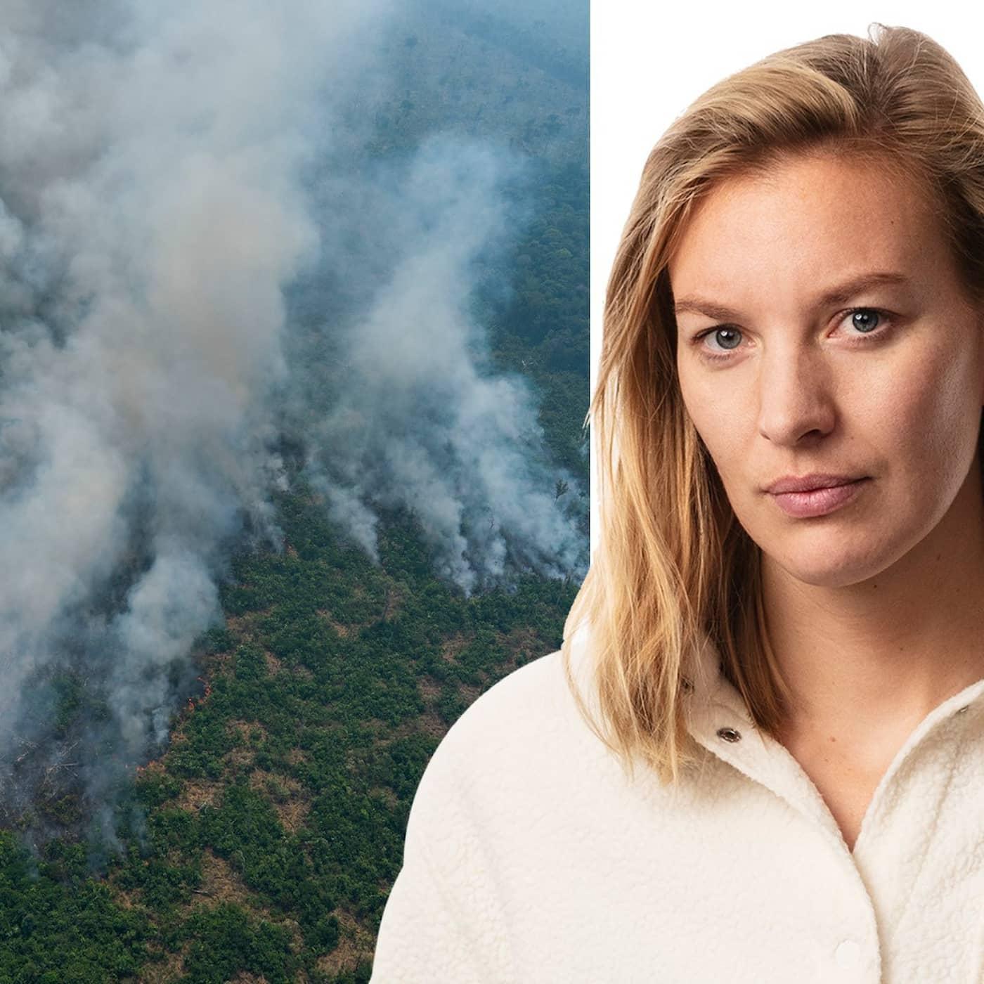 Bränderna i Amazonas ovanifrån: Sara Sundberg, Rio de Janeiro