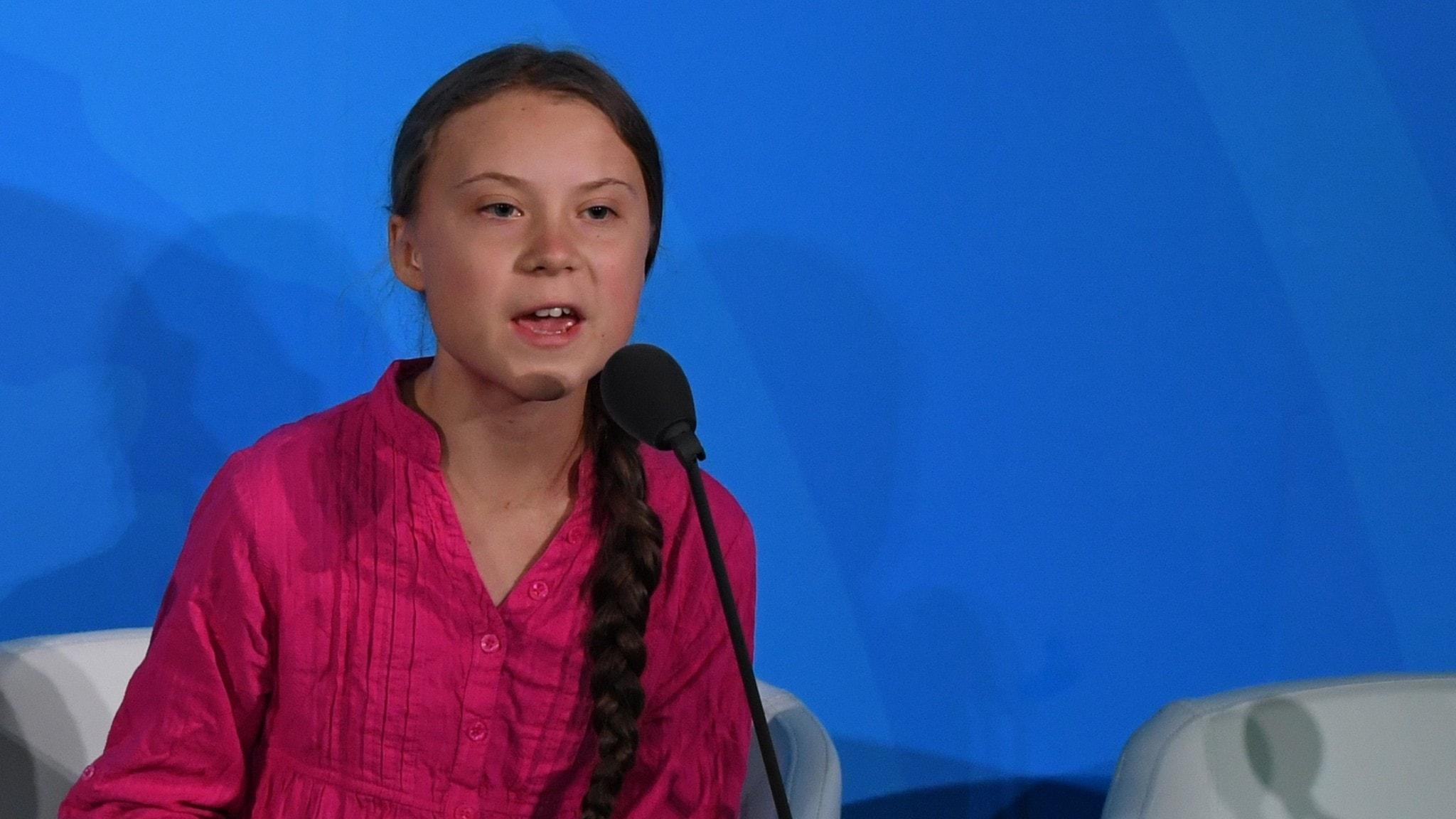 Varför hata Greta Thunberg? Patrik Holmström, New York - spela