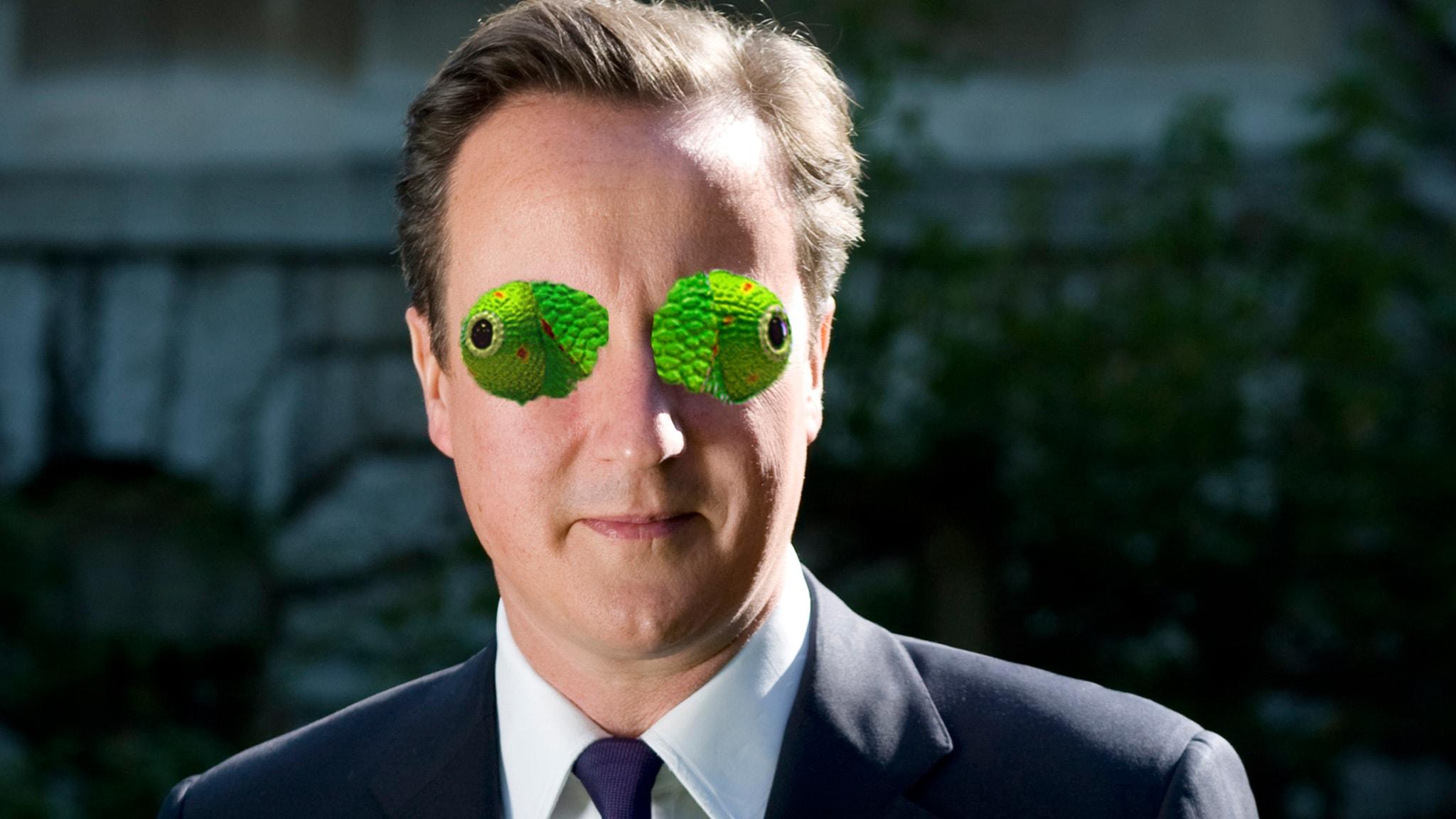 Foto: José Carlos Cortizo Pérez / Chameleon / Number 10 / Prime Minister David Cameron - official photograph / CC BY 2.0