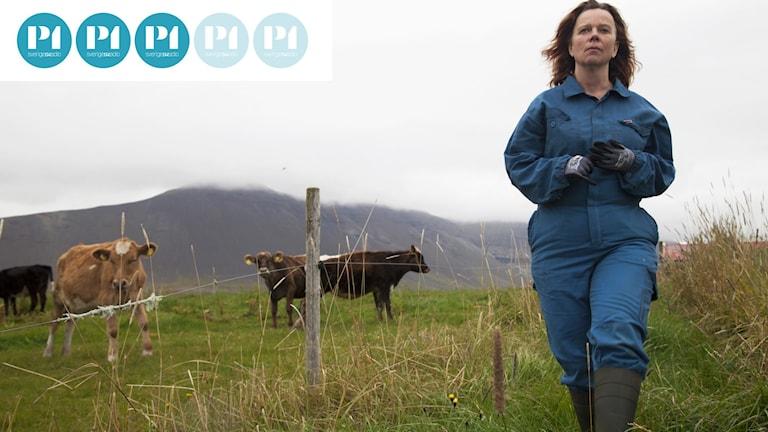 Arndís Hrönn Egilsdóttir spelar Inga i Mjölkkriget. Distribution: Scanbox