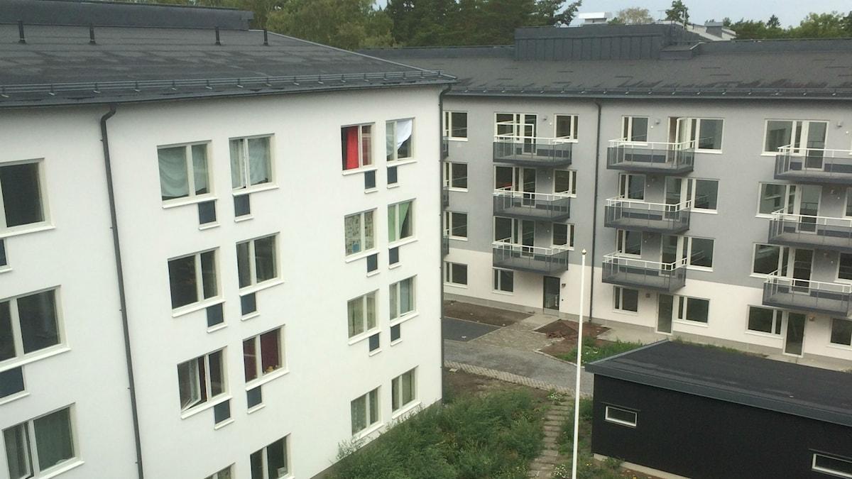 Bjällerkransen i Västertorp