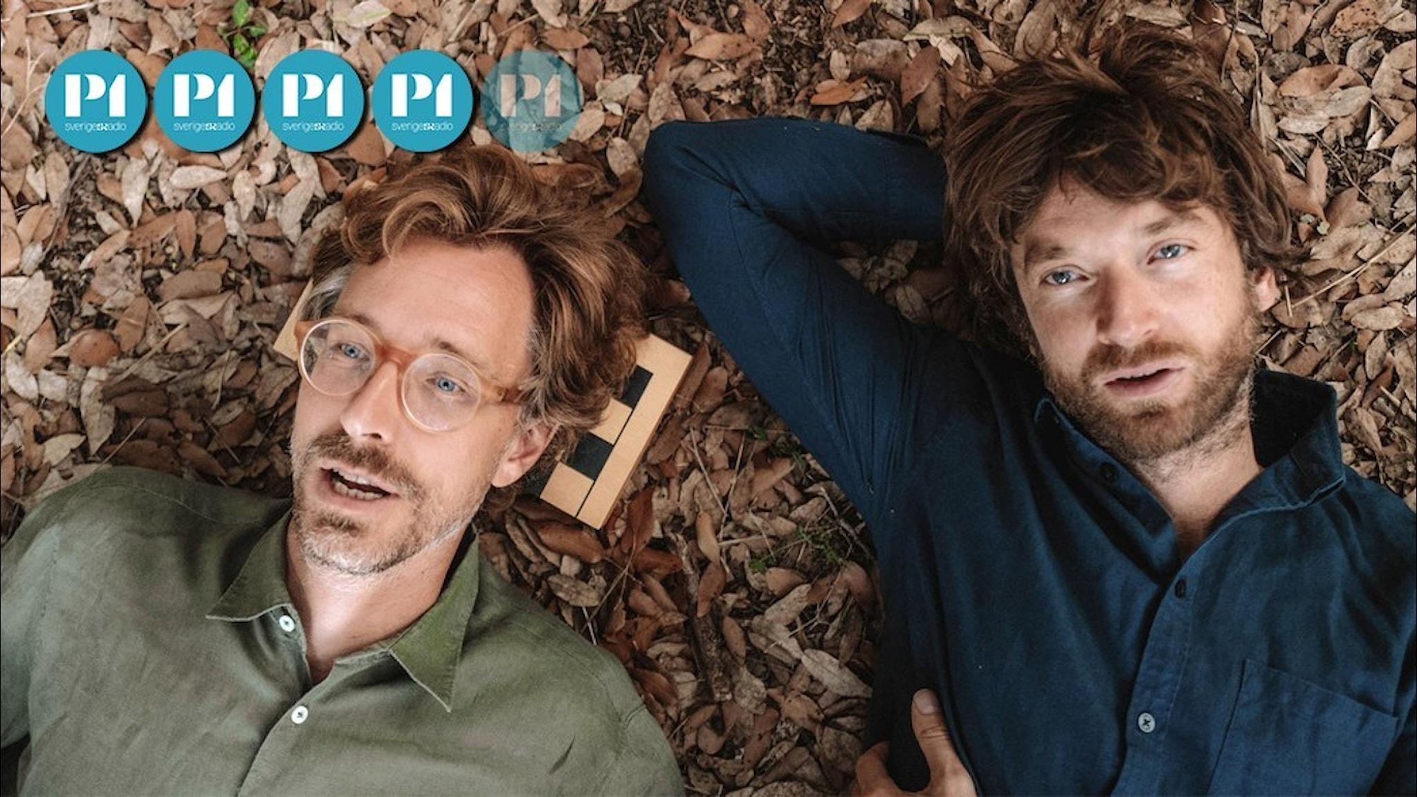 "Norska popgruppen Kings of convenience aktuell med nya skivan ""Peace and love""."