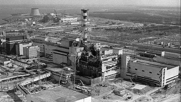 Tjernobyl. Foto: Volodymyr Repik/Scanpix.