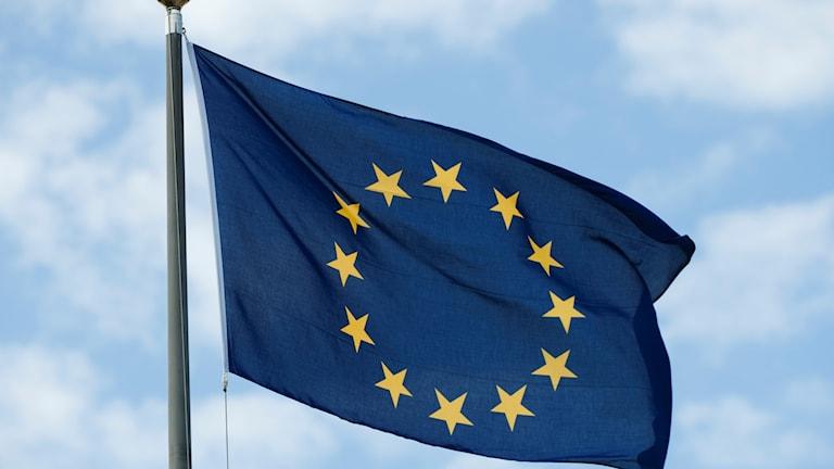 Snart röstar Europaparlamentet