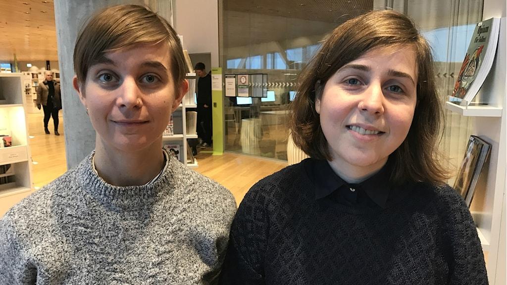 Konstnären Una Holmquist och serietecknaren Ylva Oknelid ska vara seriepedagoger.