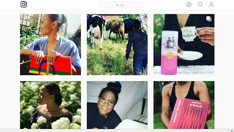 Skärmdump från Alice Bah Kuhnkes Instagram-konto