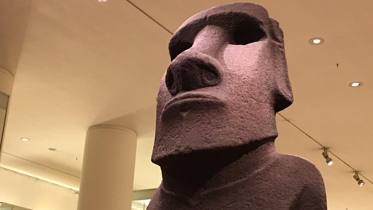 Hoa Hakananai´a, den stulna vännen, är det passande namnet på den nästan 2,5 meter långa karakteristiska ansikts-statyn som tillverkades på Påskön för över 800 år sedan.