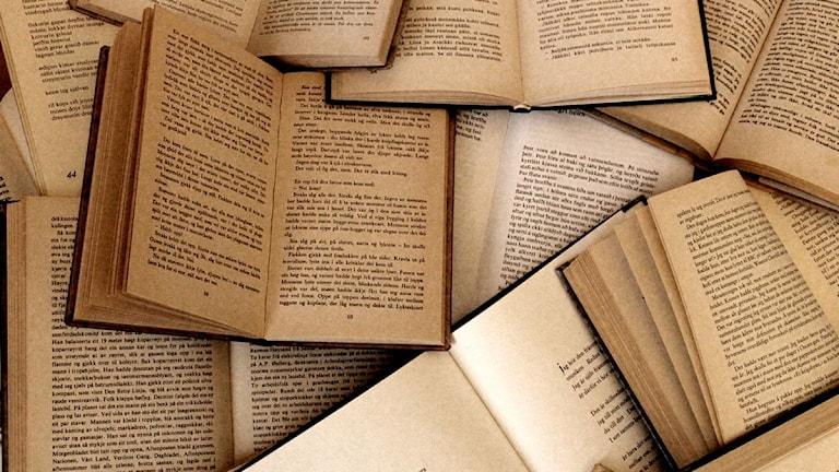 I handboken berättar Mall Stålhammar bland annat om hur översättningar inte alltid varit vad de är idag. Foto: Sigurður Ólafsson/Wikipedia