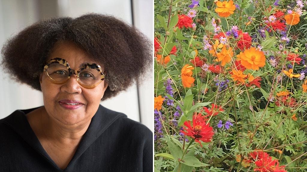 Författaren Jamaica Kincaid och hennes trädgård
