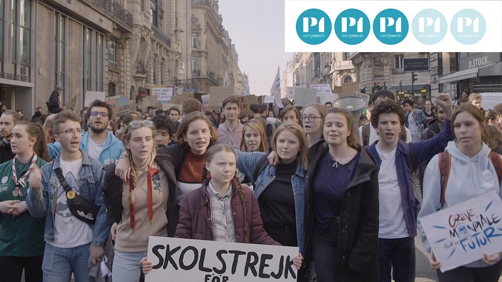 Bilden föreställer Greta Thunberg