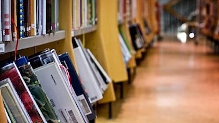 Regeringen har fattat beslut om att höja biblioteksersättningen.