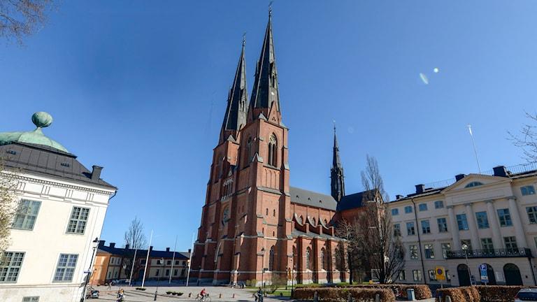 Uppsala domkyrka. Foto: Bertil Ericson/TT
