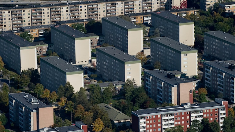 En vy över Stockholmsförorten Tensta. Foto: Jonas Ekströmer/TT