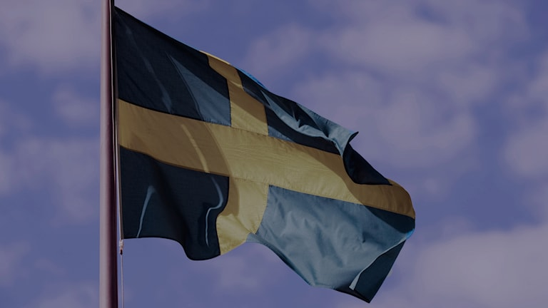 Svenska flaggan. Foto: Henrik Montgomery/TT