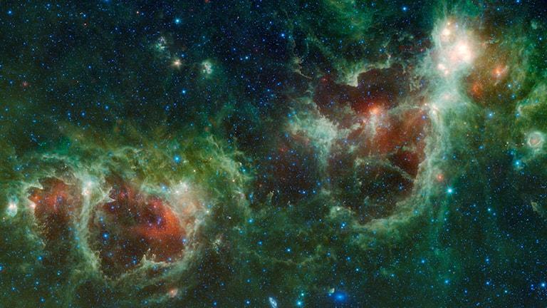 Foto: NASA/AP/TT