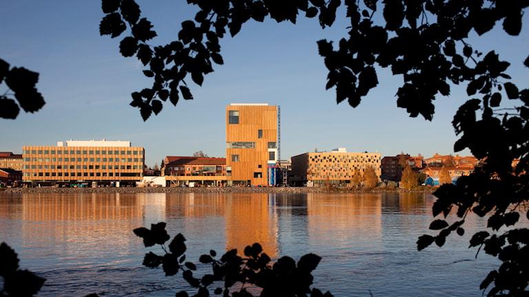 Bildmuseet i Umeå. Foto: Johan Gunseus/TT