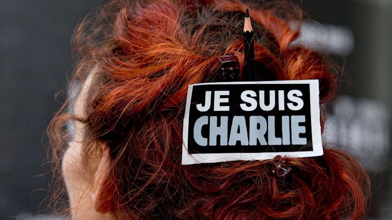 Stödaktion för offren på Charlie Hebdo. Foto: AP Photo/Peter Dejong