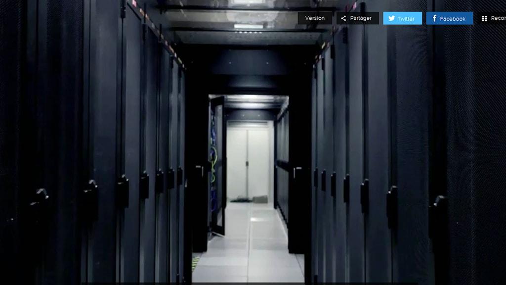 """Filmprojektet """"World Brain"""" visades på Transmediale. Foto: worldbrain.arte.tv"""