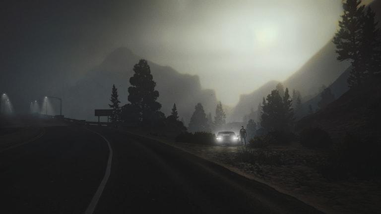 En av Linus Johanssons bilder ur Grand Theft Auto 5 Foto: Rockstar Games