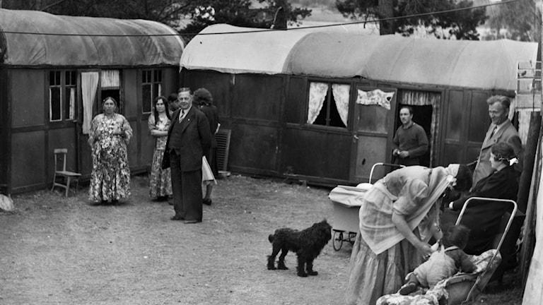 Ett romskt läger i Gubbängen, Enskede omkring 6:e juli 1943. Foto: Svenska Dagbladet / TT