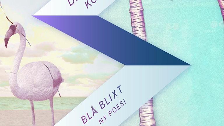 Blå Blixt, Poesi antolog, Foto: Brombergs förlag