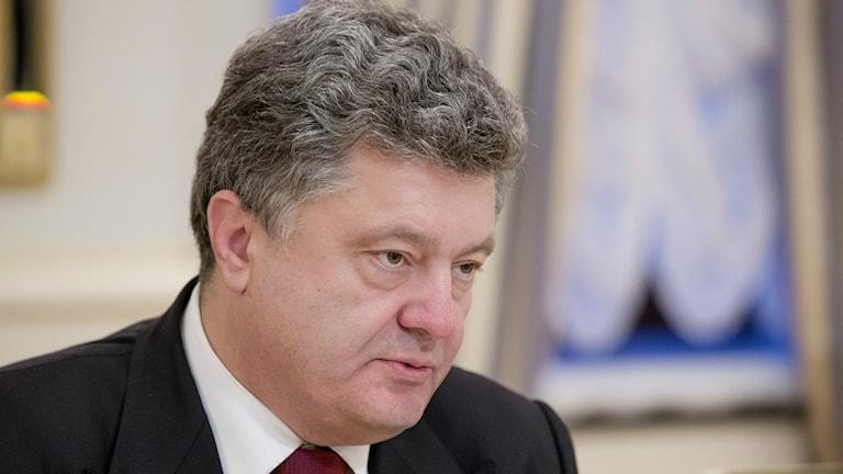 Ukrainas president, Petro Porosjenko. Foto: TT