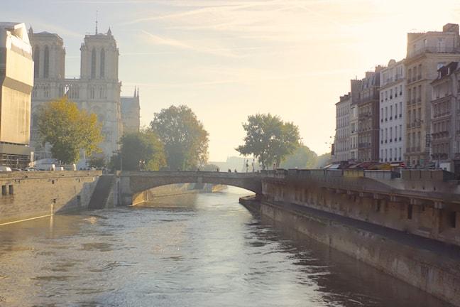 Kajerna vid Seine med katedralen Notre-Dame. Foto Mikael Timm