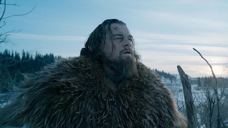 "Leonardo DiCaprio i ""The Revenant"". Foto: AP/TT"