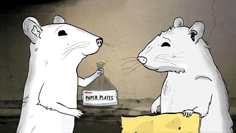I råttornas värld i HBO-serien Animals kan man imponera på tjejerna med papperstallrikar. Foto: HBO Nordic