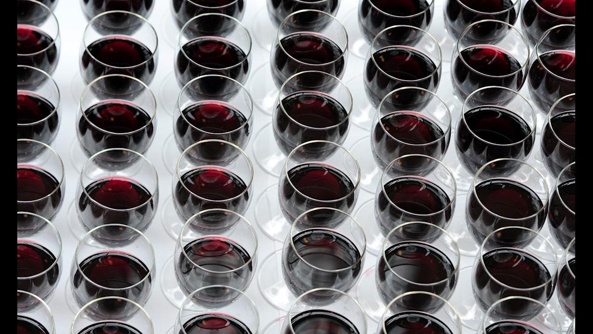 En majoritet av fackförbunden i kultursektorn saknar egna skriftliga alkoholregler.