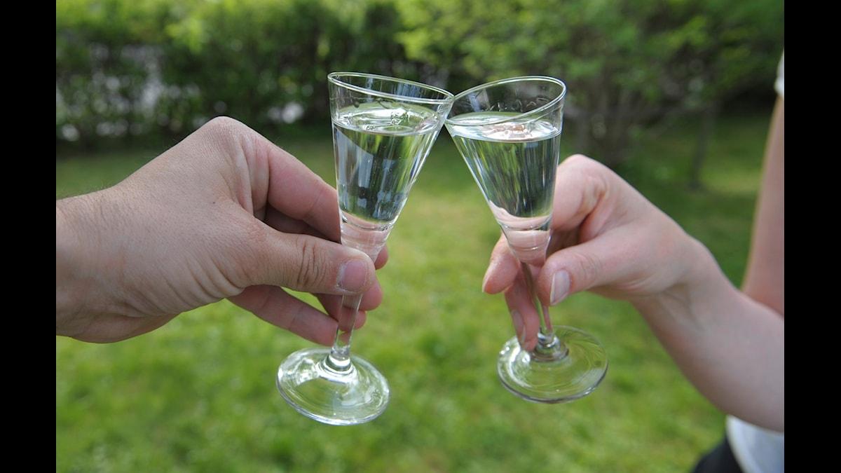 Nu tar allt fler fackförbund i kultursektorn fram nedskrivna alkoholregler.