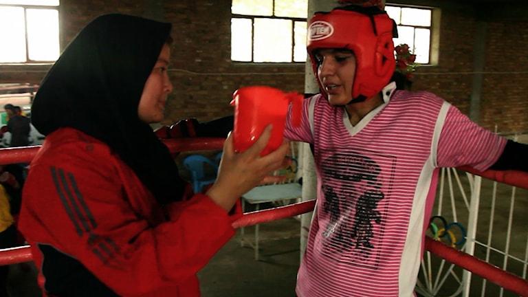 Sadaf Rahimi kämpar för att bli Afganistans bästa kvinnliga boxare i dokumentären Boxing for Freedom.