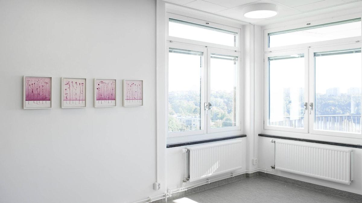 Exempel på konst i vården: landstingsägda konstverket av Karin Lind Flora I-IV som hänger på  på SÖS i Stockholm.