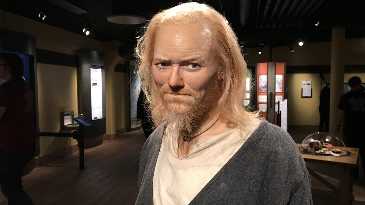 Viking av vax på museet Vikingaliv i Stockholm. Foto: Karsten Thurfjell/SR